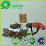 El polvo del extracto de Lingzhi Reishi Ganoderma Lucidum encapsula la cápsula del micelio