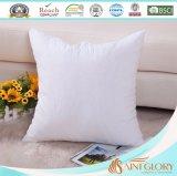 Poser le coussin blanc doucement euro de palier de qualité de sofa intérieur