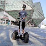 Вездеход V5+ ветра колес велосипеда крейсера с самоката дороги