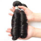 方法ばねの巻き毛のRemyのブラジルの人間の毛髪