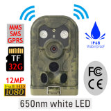OEMの12MP 1080Pのトラップのカメラが付いている森林ハンチングカメラの最も熱い道のカメラ