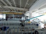 Китай ЕВА прокатывая отливая в форму линию декоративную фабрику машины Woodworking