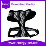 Prodotto dell'animale domestico della maglia del cablaggio dei vestiti del cane di Guangzhou