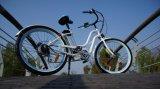 楽しみEn15194かのためのStyle Electric Bikeなんと美しい女性
