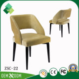 Amerikanische einfache Art Ashtree antiker Stuhl für Garten (ZSC-22)
