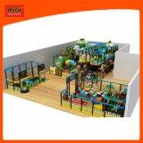 Le parc d'attractions de Mich badine la cour de jeu d'intérieur de cour de jeu