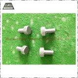 Boulons Nuts de pièces de clou/tungstène de /Tungsten de tungstène pur/tungstène/pièces de molybdène