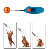 Stretchable Haustier-Training Clicker Hundekatze-Beweglichkeits-Training Clickers