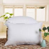 USA-weiße Standardgans Pillow unten für Haus