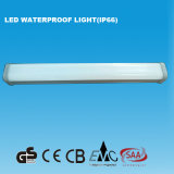luz impermeable de los 2FT IP66 LED con el Ce del GS (15W)
