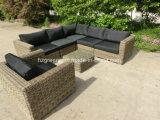 8 parti del sofà rotondo del rattan della mobilia esterna stabilita del patio