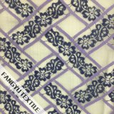 Bello tessuto del merletto con il disegno trasversale della banda