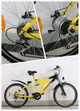 [فست سبيد] دراجة كهربائيّة مع يشبع تعليق