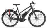 28 بوصة كهربائيّة درّاجة كثّ مكشوف [مورتور] [ليثيوم بتّري] /Adult مدينة درّاجة كهربائيّة /Street [بيك/-بيك] كهربائيّة ([س-2818])