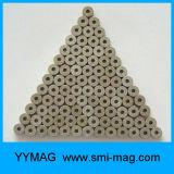 고품질 N45 네오디뮴 판매를 위한 작은 자석 고리 자석