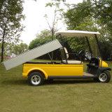 Тележка гольфа функции инструмента (A1H2)