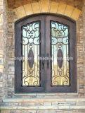 Puerta exterior del hierro labrado de la antigüedad hermosa