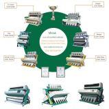 Machine van de Sorteerder van de Kleur van de riem CCD de Sorterende/van de Kleur van Groenten