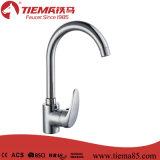 Choisir le robinet en laiton de cuisine de bassin de traitement (ZS70605)