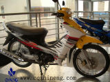 Moto (ZN125-7)
