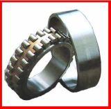 INAの円柱軸受(SL183080)