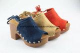 Los zapatos atractivos de las mujeres del calzado de la punta del pío con atan para arriba diseño