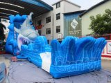 Скольжение воды гигантской акулы раздувное для парка атракционов (CHSL577)