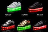 Zapatos de carga luminosos de la fluorescencia LED de la manera (la Florida 06)