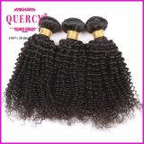 Cheveu 100% bouclé crépu brésilien de Vierge non transformée de bonne qualité de la pente 8A de cheveu de Quercy