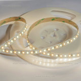 Tira flexible del color CRI90+ Epistar SMD2835 LED del CCT con precio de fábrica