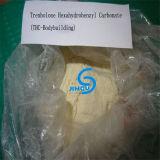 Carbonato Parabolan de Trenbolone Hexahydrobenzyl da pureza elevada com efeitos elevados