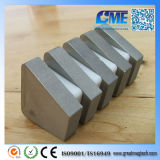 Customize Super Strong Sintered Irregular SmCo Magnete