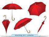 우산 해골을%s 가진 섬유유리 폴란드