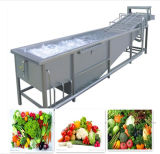 자동적인 Air Bubble Cleaning Machine, Fruit 및 Vegetable Washing Machine (Bubble Washer)