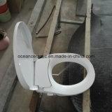Неэлектронная крышка места туалета Bidet Ts-1001