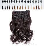 Hair Extensions Half Wigsの100%年のインドHair Clip