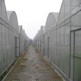 Casa verde multi agrícola de la película plástica del palmo con precio de fábrica