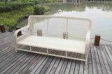 流行の藤の柳細工のテラスの庭の屋外のソファー
