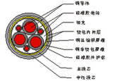 cabo Sheathed borracha protegido combinado envolvido trançado e de cobre do silicone 0.6/1kv borracha de cobre do fio de cobre isolado do silicone (flama - retardador) (delicado) para Vari
