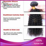 Cheveux humains bouclés crépus de cheveu indien en gros de cheveux humains