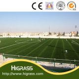 55mmのサッカーの草