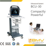 (BCU-30 Vet) 15 pulgadas portátil de color Doppler Ultrasonido en Vet