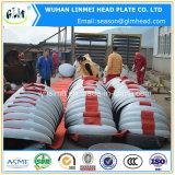 L'estremità servita materiale dell'acciaio inossidabile AISI 304 dirige le protezioni del tubo