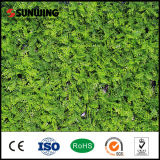 Mur artificiel de plantes vertes de PE professionnel chinois de fabricant
