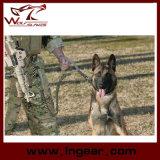 El entrenamiento del perro correa del cinturón táctico militar del perro del amortiguador auxiliar de la honda correa