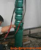 Bomba de água submergível elétrica do furo do furo da irrigação do poço profundo