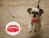 Traqueur de GPS avec le collier pour le chien/chat/animal familier