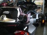 베스트셀러 2015년은 Spyder Rt S 3 3개의 바퀴 기관자전차 할 수 있 이다