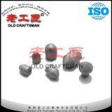 OEM Supply Spade Tungsten Carbide Drill Bit