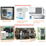 Конструкция охладителя холодильных установок плодоовощ для холодильных установок клубники